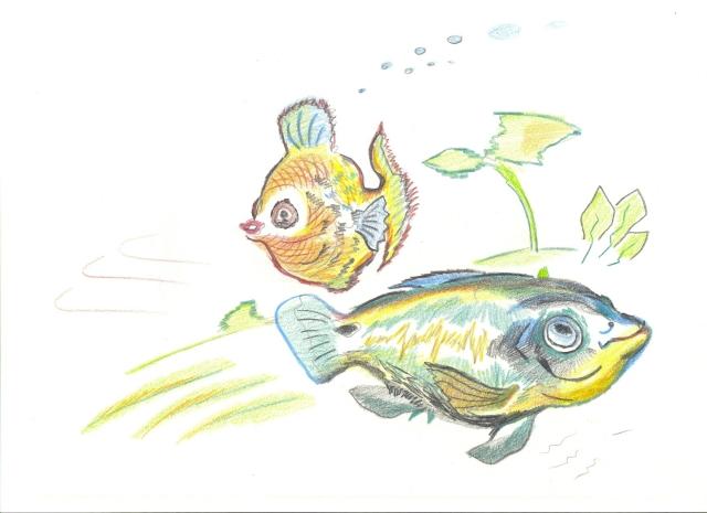 2010_013_Aqua