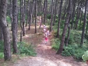 small_erdő