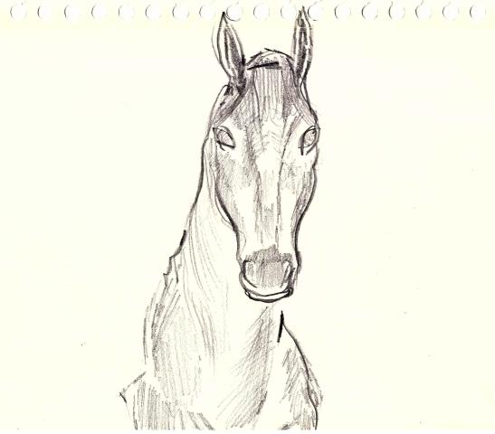 small_horses3