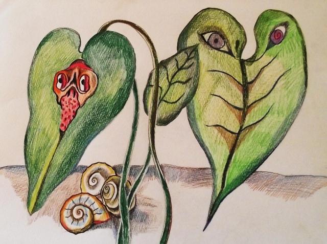 small_szobanövény
